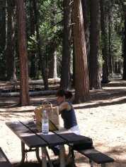 Preparant el pick-nick al Yosemite National Park. Califòrnia