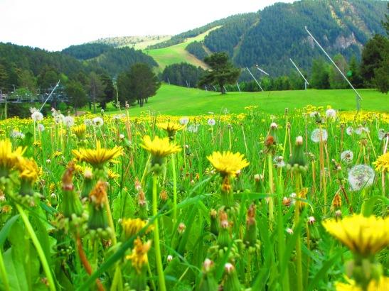 Les pistes d'esqui de La Molina a la primavera