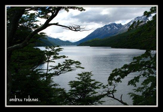 Lago del desierto. Patagonia
