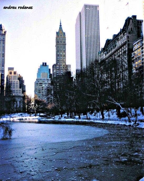 Central Park. New York