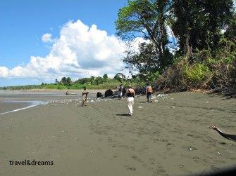 Playa. P.N.Corcovado