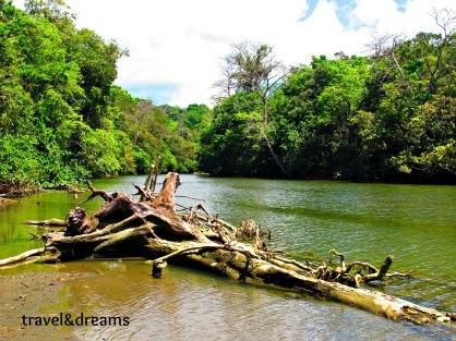 Rio Claro. P.N.Corcovado
